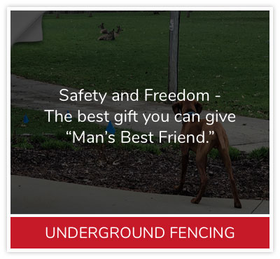 underground-fencing-descrip